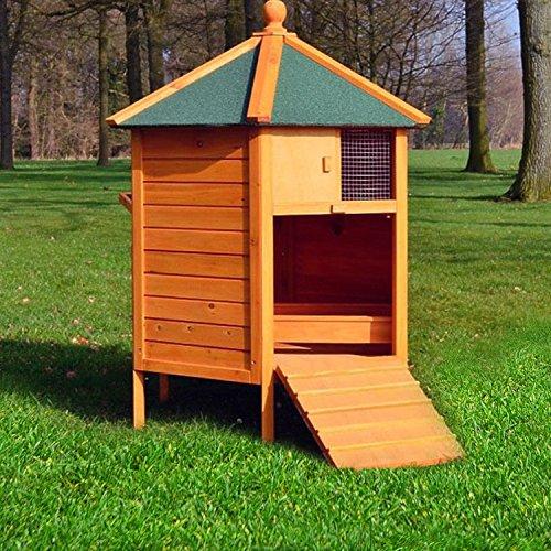 """ZooPrimus Hühner-Stall Nr 28 Geflügel-Voliere """"HÜHNER-PAVILLON"""" Enten-Haus für Außenbereich (Geeignet für Kleintiere: Hühner, Geflügel, Vögel, Enten usw.) - 3"""
