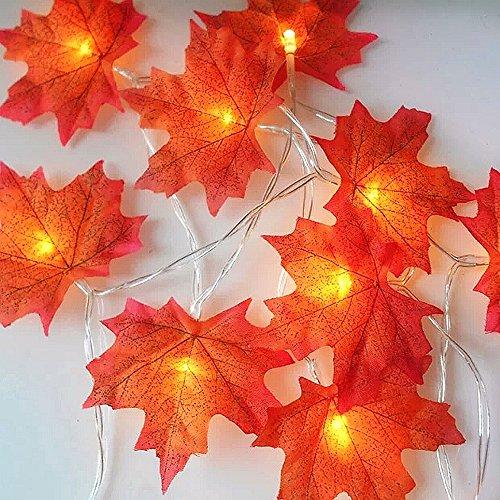 chterketten, 20 LED Maple Leaf Lamp String, Blinken und konstant zwei Modi, Warmes weißes Licht, Batteriebox Power, 3M, IP54 wasserdicht ()