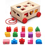 Baybee Wooden Push and Pull Along Shape Sorter Puzzle Cube Classic Wooden Toys, Learning Toy for Kids Educational Toys…