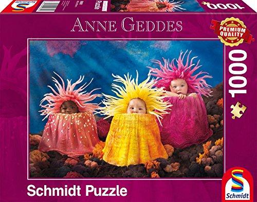 Schmidt Spiele Puzzle per Adulto: Piccoli Tesori Marini, 1000 pezzi