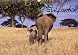 Elefanten (Wandkalender 2018 DIN A3 quer): Die grauen Riesen von ihrer schönsten Seite (Monatskalender, 14 Seiten ) (CALVENDO Tiere) [Kalender] [Apr 01, 2017] Voß, Michael