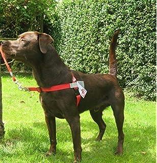 Walk Your Dog With Love Original Standard Edition 11 29kg Classic Black Amazon Co Uk Pet Supplies