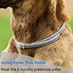 sevicat [2018 upgrade] dog anti flea & tick collar 6 months effectiveness protection for dogs and puppies, adjustable fits (for dog) SEVICAT [2018 Upgrade] Dog Anti Flea & Tick Collar 6 Months Effectiveness Protection for Dogs and Puppies, Adjustable Fits (For Dog) 61kEIbg2mVL