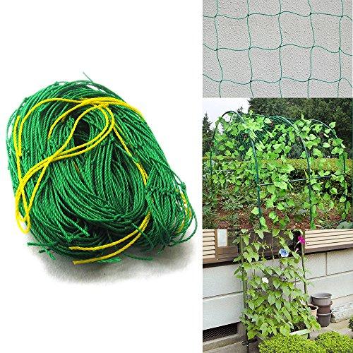 Gartennetze, Klettern Pflanzenstütze Net 10* 10cm Mesh für Pflanzen, Haustiere, Gemüse Schutz