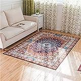 AHIMITSU Europäische minimalistische Moderne Schlafzimmer voll Teppich Wohnzimmer couchtisch Sofa großen Teppich nachttischdecke (Farbe: Orange, Größe: 50 * 80 cm) Teppich