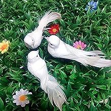 Suchergebnis Auf Amazon De Fur Weisse Tauben Hochzeit
