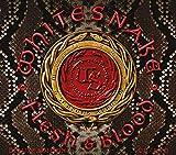 Flesh & Blood (CD+Dvd Digipak)