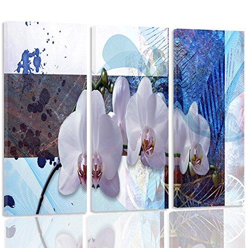 feeby-frames-quadro-multipannello-di-3-pannelli-quadro-su-tela-stampa-artistica-canvas-tipo-c-60x80-