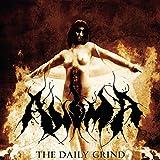 Songtexte von Anima - The Daily Grind