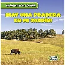 Hay una Pradera en mi Jardín! / There Are Grasslands in My Backyard!: 6 (Biomas en el Jardín / Backyard Biomes)