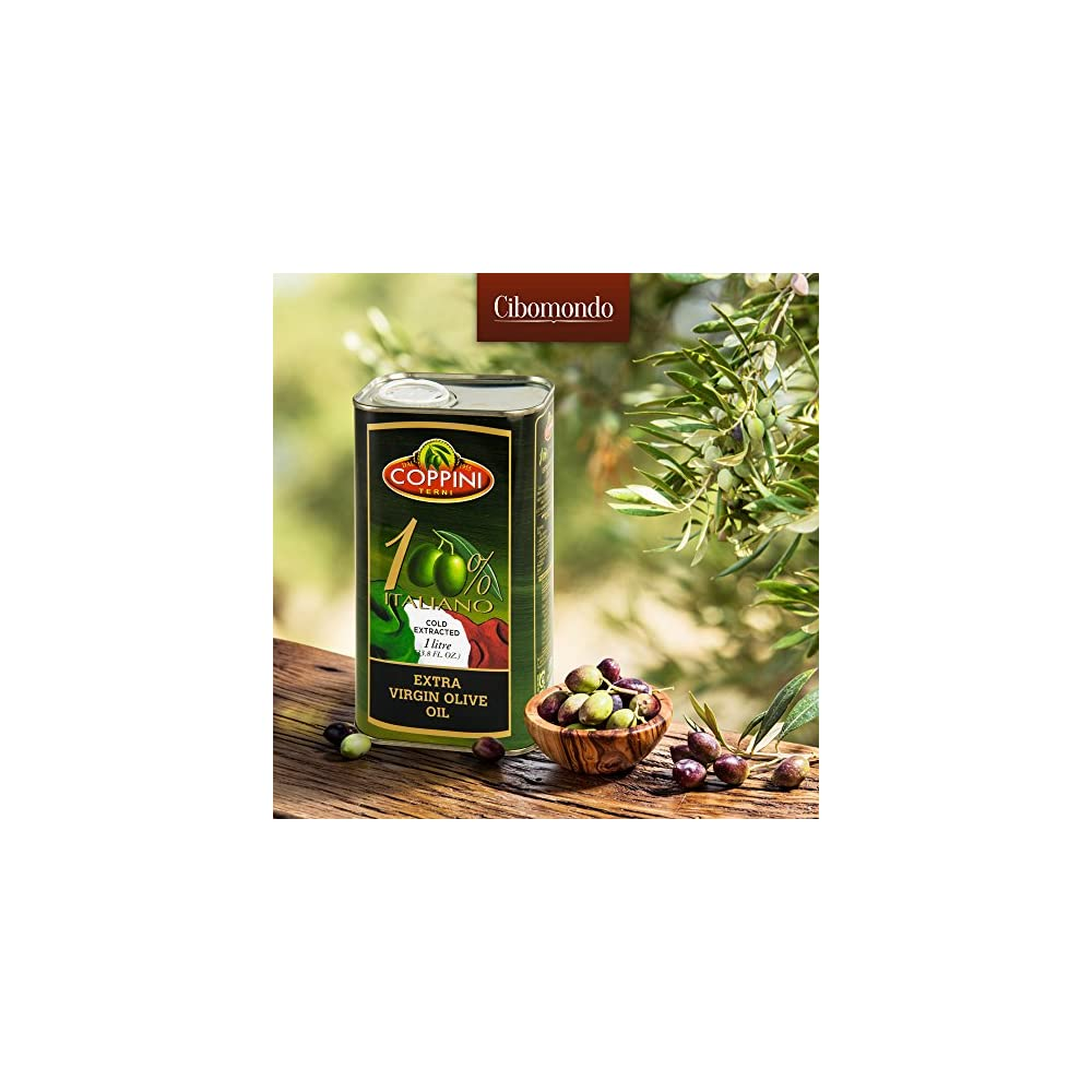 Olivenl Extra Nativ Von Coppini Einem Familienbetrieb Aus Umbrien Italien Mild Und Fruchtig Kaltgepresst Fr Premium Qualitt Im Praktischen 1 Liter Kanister