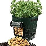 YongYI 50L Giardiniera bag (2-pack)–coltivare ortaggi: patata, carota, pomodoro, cipolla–fioriera con accesso flap durevole patata vasi per raccolta–eco-friendly–Heavy Duty