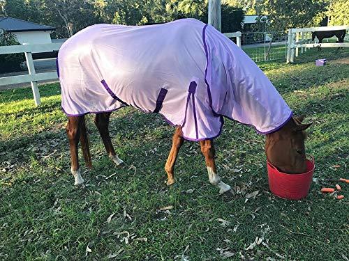 Equipride Pferd Fliegendecke mit Hals und Passende Fliegen Maske Lila