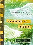 Experiencing Heaven: True Stories, Prayers, and Promises for Every Day of the Year by Sarabeth Browne (2014-10-07)
