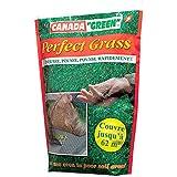 Canada Green 08108 Perfect Grass  Gazon de Jardin Vert 1 kg