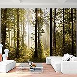 Fototapete Wald Bäume 352 x 250 cm Vlies Wand Tapete Wohnzimmer Schlafzimmer Büro Flur Dekoration Wandbilder XXL Moderne Wanddeko -
