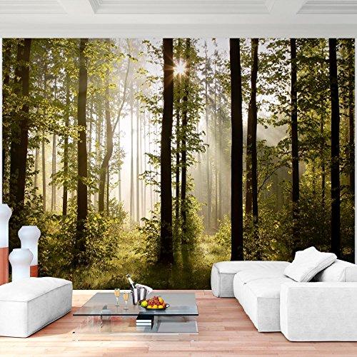 Fototapete Wald Bäume 352 x 250 cm Vlies Wand Tapete Wohnzimmer Schlafzimmer Büro Flur Dekoration Wandbilder XXL Moderne Wanddeko - 100% MADE IN GERMANY - Landschaft Natur Runa Tapeten 9010011a