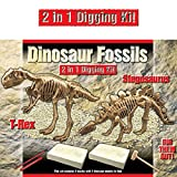 2 IN 1 Deluxe Dig Out Dinosaur Skeleton Fossil Palaeontology Archaeology Excavation Kit - T Rex AND Stegosaurus