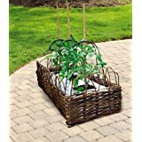 Gardman - Maceta para el crecimiento de plantas (madera de sauce)