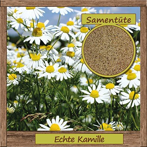 Samenliebe Echte Kamille-Samen > 1000 Samen hochwertige Kräuter-Samen - aus natürlichem Anbau - Herkunftsland: Deutschland