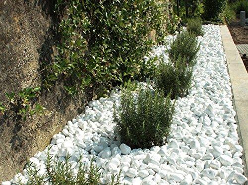 Ciottoli di marmo bianco carrara in sacchi sassi for Decorazioni giardino aiuole