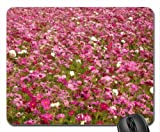 Cosmos flower fields Mouse Pad, Mousepad (Fields Mouse Pad)