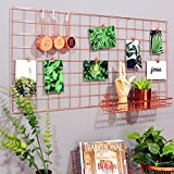 Best Kitchen Decors - Rumcent Rose Gold Gridwall Photo Display,Metal Mesh Panel,Wall Review