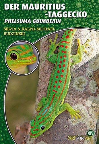 Der Mauritius-Taggecko: Phelsuma guimbeaui - Taggecko