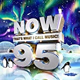 Now That's What I Call Music 95