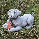 Perro con piedra adorno de jardín Estatua Escultura Decoración de zapato de tacón