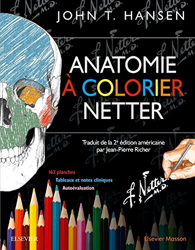 Anatomie  colorier Netter