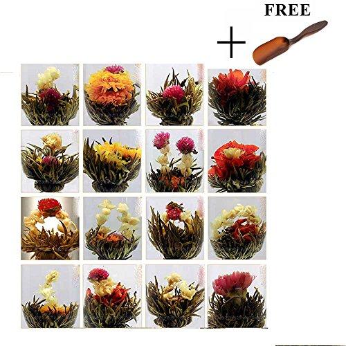 huntgold-10ps-eine-packung-zufalls-chinesisches-grunes-kunstlerische-blooming-bluhende-blumen-tee-ba