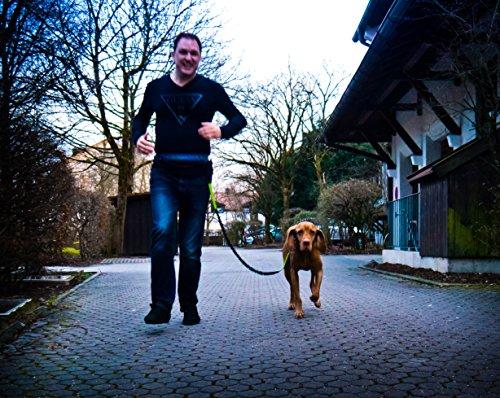 Jogging-Leine - Elastische und reflektierende 120 cm Hundeleine (bis 200 cm dehnbar) mit verstellbarem Hüftgurt aus reißfestem Nylon mit abnehmbarem Hüftbeutel - Ideal zum freihändigen Joggen, Spazieren und Wandern von Hundefreund -