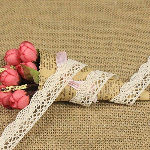 10 Meter Vintage Spitzenband Spitzenborte Häkel-Borte Spitze Nähen Spitzenbordüre Geschenkbox Deko (Beige) - Beige Borte