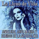 New Age Arpa Angélica