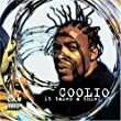 It Takes a Thief [Import] [Audio CD] Coolio