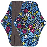 Ularma Reusable Charcoal Bamboo Mama Pads/ Menstrual Pads Cloth/ Sanitary Napkins Pad -Night time protection (L, Blue)