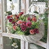 XMJR Wall decoration Emulación de decoración de pared para montaje en pared de flores flores artificiales habitación con balcón rattan colgaderas macetas continental arreglo floral para la solapa del novio, mimbre cestas de flores + fresas, en lei rojo