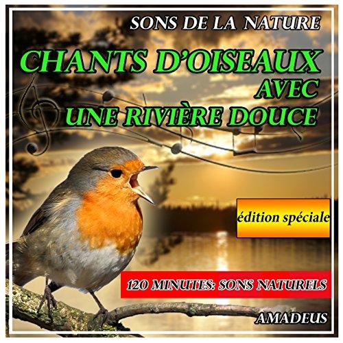 chants-doiseaux-avec-une-riviere-douce-sons-de-la-nature