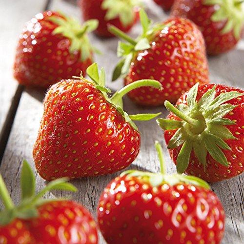 Preisvergleich Produktbild Besser Erdbeeren; 1000 g