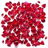 Valentinstag Rosenblüten, Künstliche Rosen, Blumenblätter / Rosenblätter aus Seide Fühlen, Rot, Blumen, Romantisch (1000)