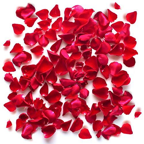 Lot De Pétales De Rose Réaliste En Soie Rouge Fleurs, Tissu, Décoration, La Saint-Valentin, Confetti De Mariage Table Baptême (1000)