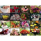 Puzzle 2000 Teile - Collage - Blumen