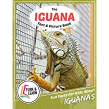 The Iguana Fact and Picture Book: Fun Facts for Kids About Iguanas (Turn and Learn) (English Edition)