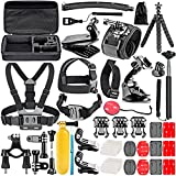 Neewer 50-in-1 Accessori Kit per GoPro Hero Session/5 Hero 1 2 3 3+ 4 5 SJ4000 5000 6000 DBPOWER AKASO VicTsing APEMAN WiMiUS Rollei QUMOX Lightdow Campark e Sony Sport Dv immagine