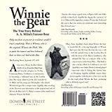 Front cover for the book Winnie the Bear by M.A. Appleby
