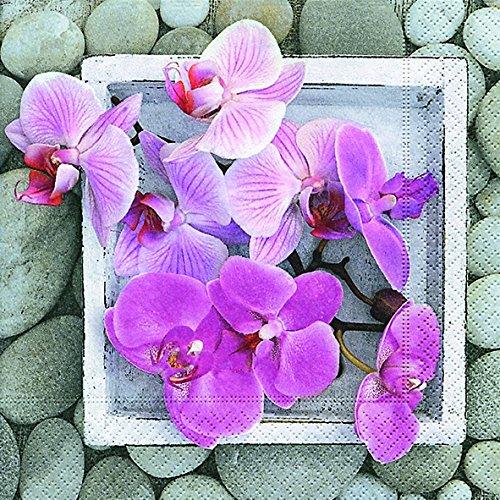 Paper+Design Lunch Design Orchidées dans le cadre 33 x 33