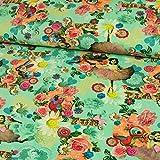 Stoffe Werning Baumwolljersey Digitaldruck buntes Muster Fun Mint Modestoffe Blumen Ballerina Herzen - Preis Gilt für 0,5 Meter