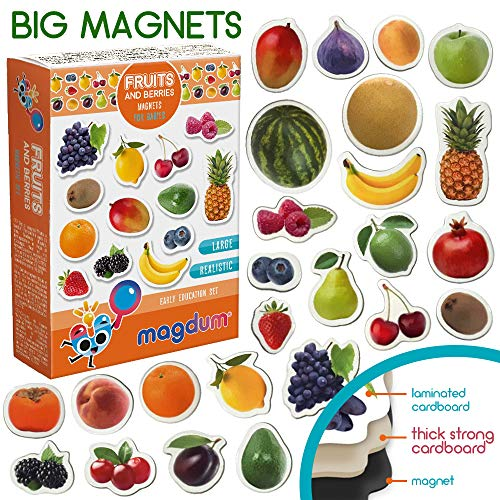 MAGDUM PHOTO Obst&Beeren - Magnete für die Küche -echte GROSSE Kühlschrankmagnete für Kleinkinder-Magnetisches Lernspielzeug Baby 3 Jahre-Lernmagnete für Kinder - Kindermagnete - Entwicklungsspielzeug