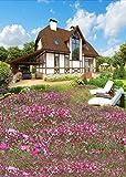 A.Monamour Kleine Rosa Blumen Im Freien Haus Vorgarten Naturlandschaft 5X7Ft Fotografie Kulissen Vinyl